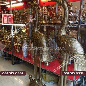Ban Doi Hac Dong Ngam Ngoc 1m72