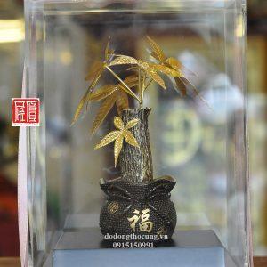 Cây Lộc Bằng Vàng (1)
