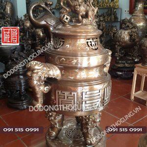 Dinh Dong My Nghe Tai Voi Kham Ngu Sac Cao 1m1