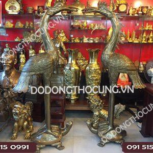 Doi Hac Dong Dung Tren Lung Rua 1m84 (9)