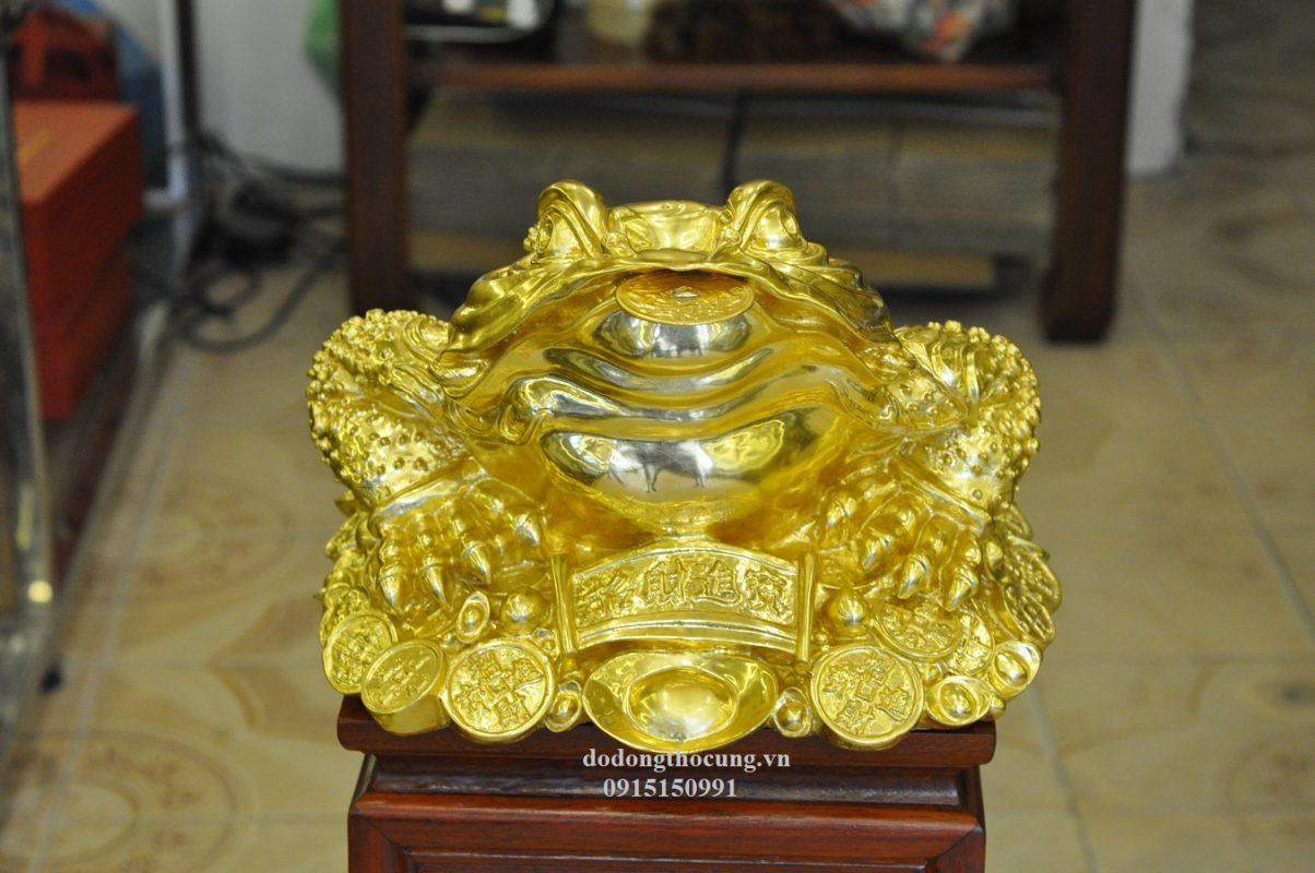 Thiềm Thừ Dát Vàng (2)