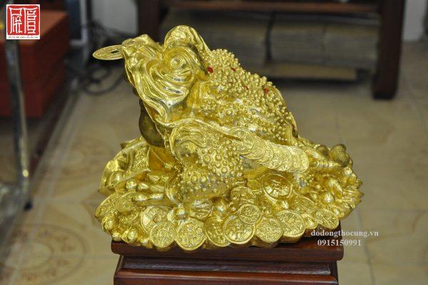 Thiềm Thừ Dát Vàng (3)